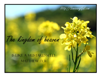 kingdom-of-heaven-is-like-mustard-seed-500x386